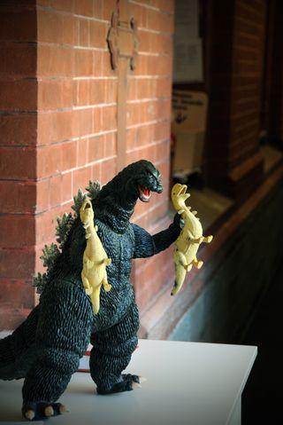 Museum humour