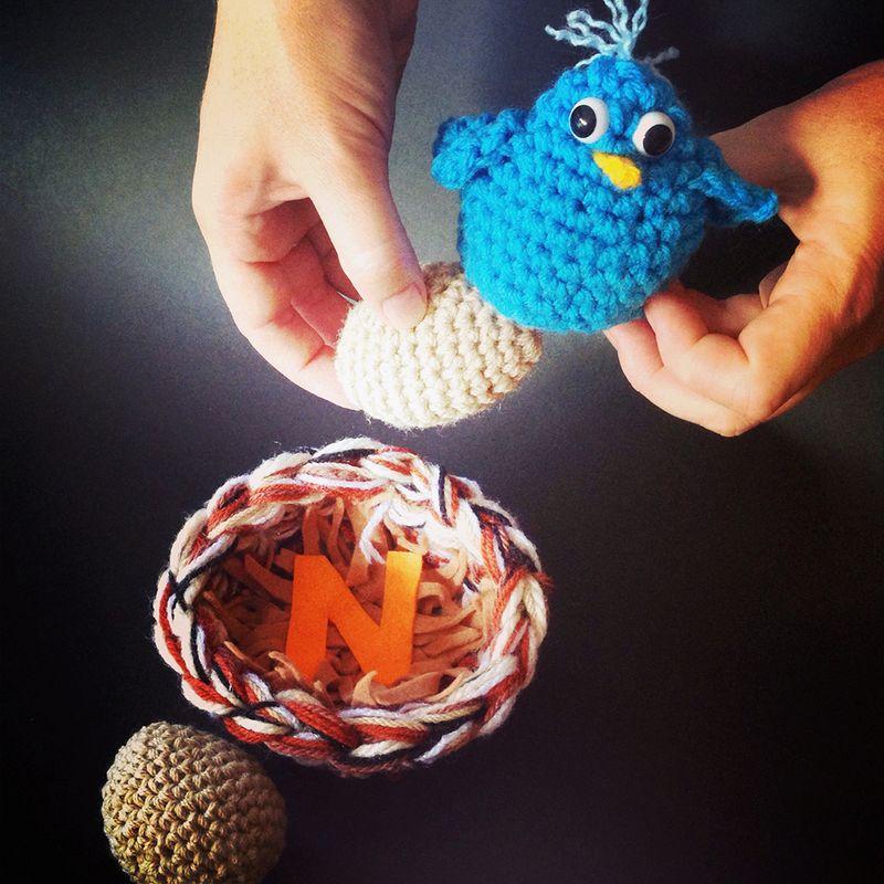 LetterN_Susan_nesting bluebird